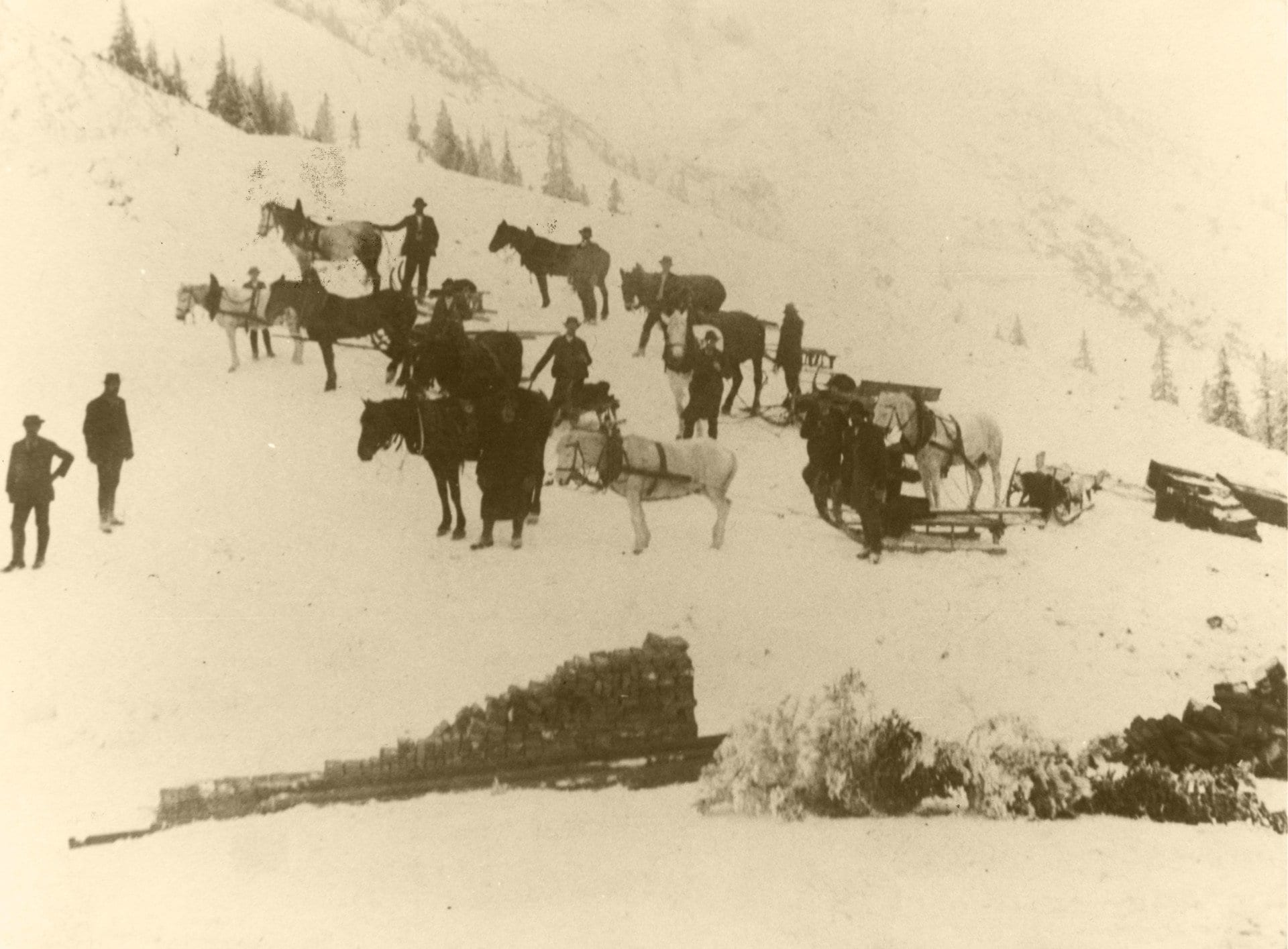 1910 003