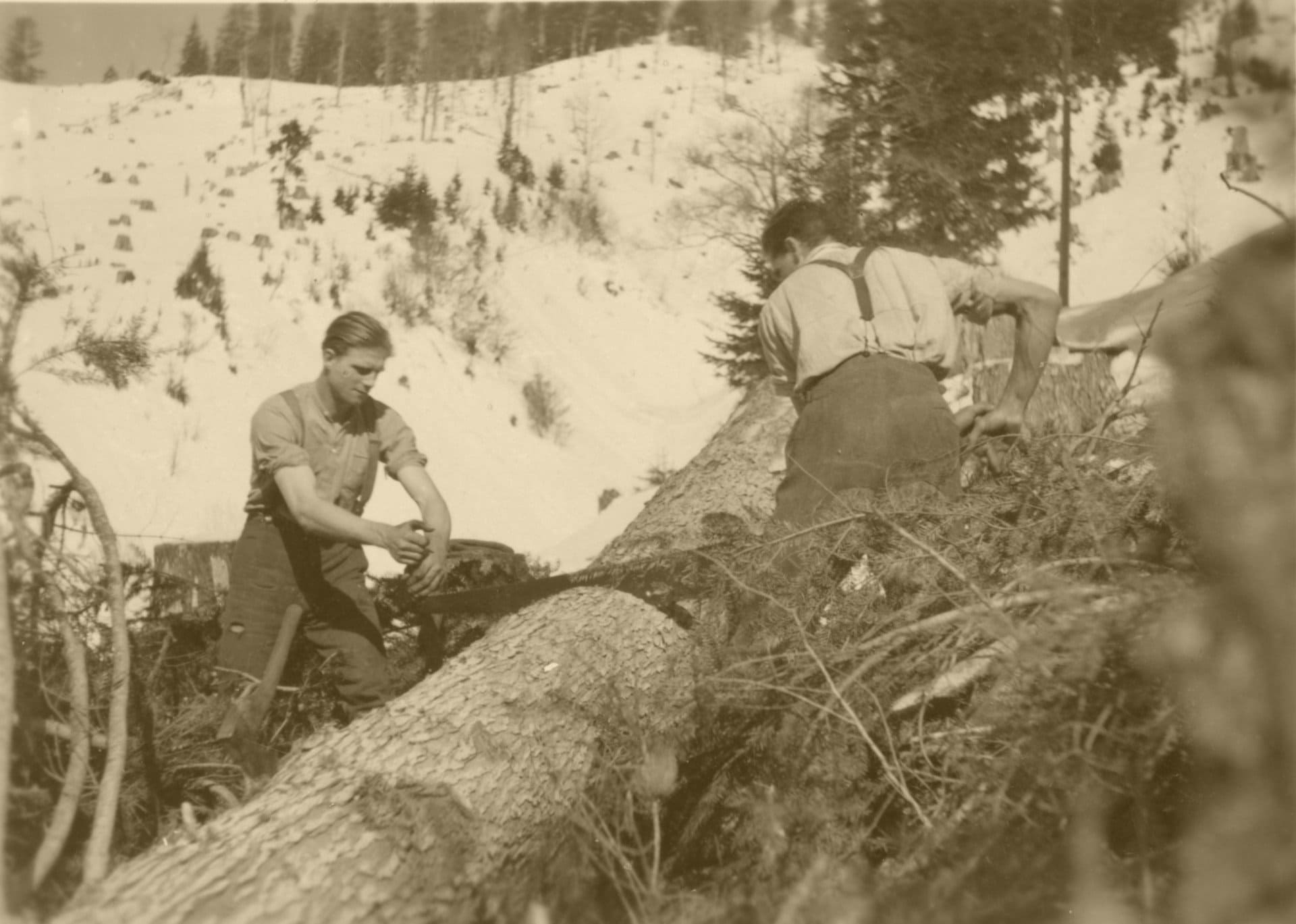 1938 006