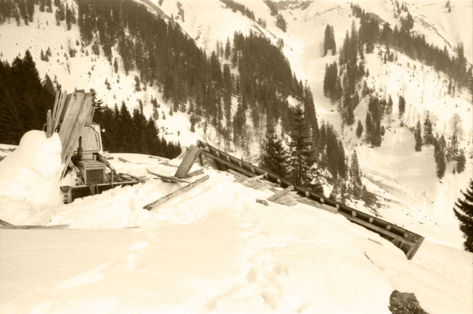 1984 010