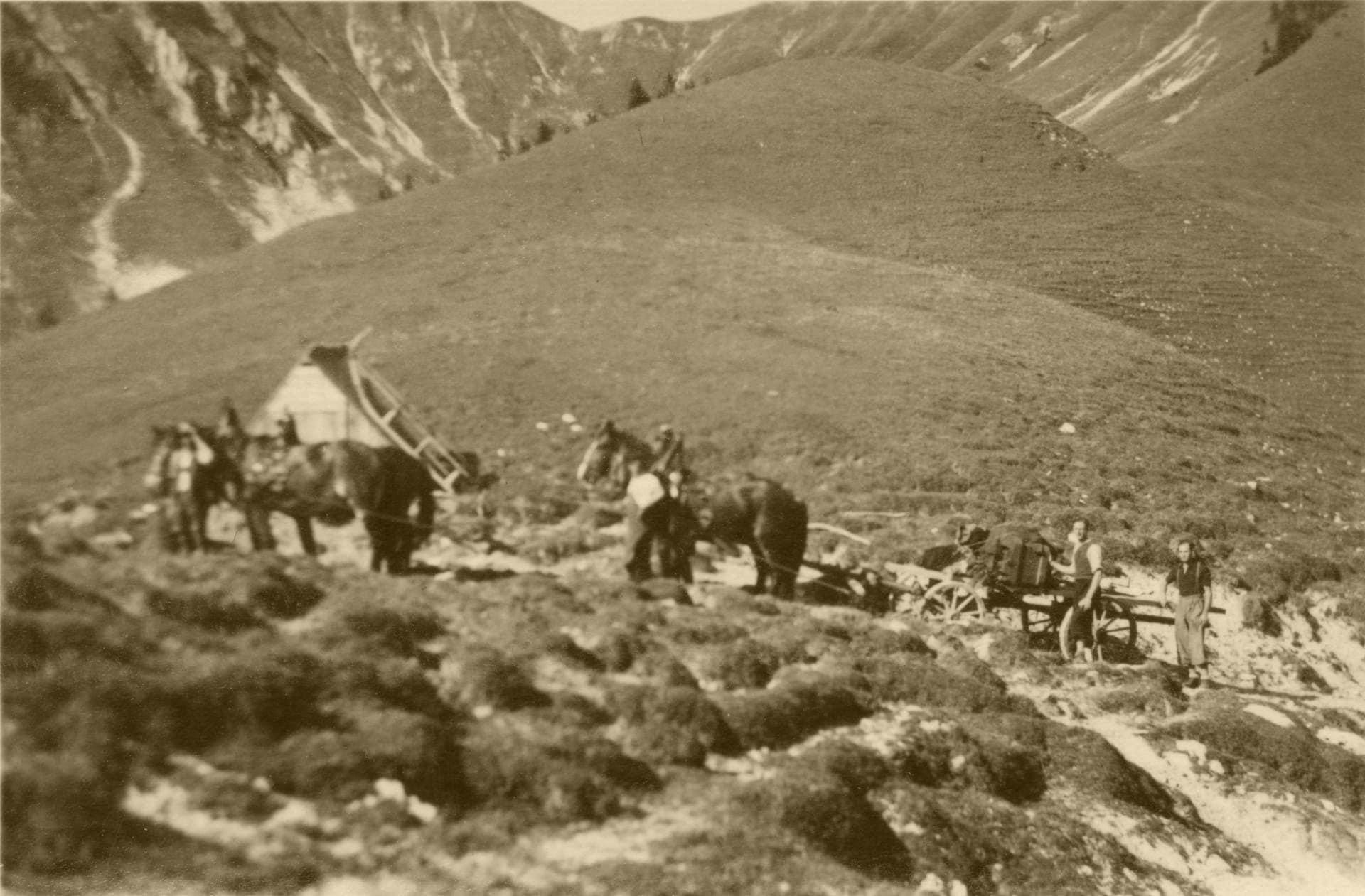 1939 013